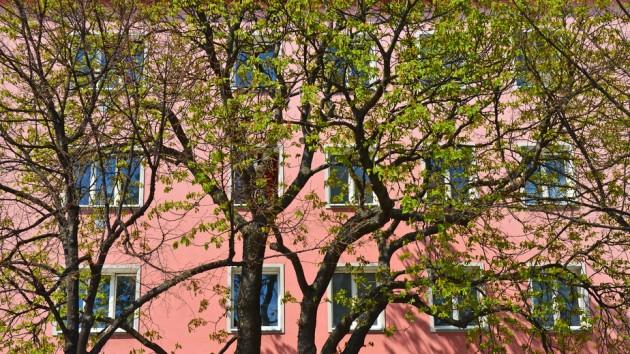 Wissenswertes zum Thema Gemeindewohnungen